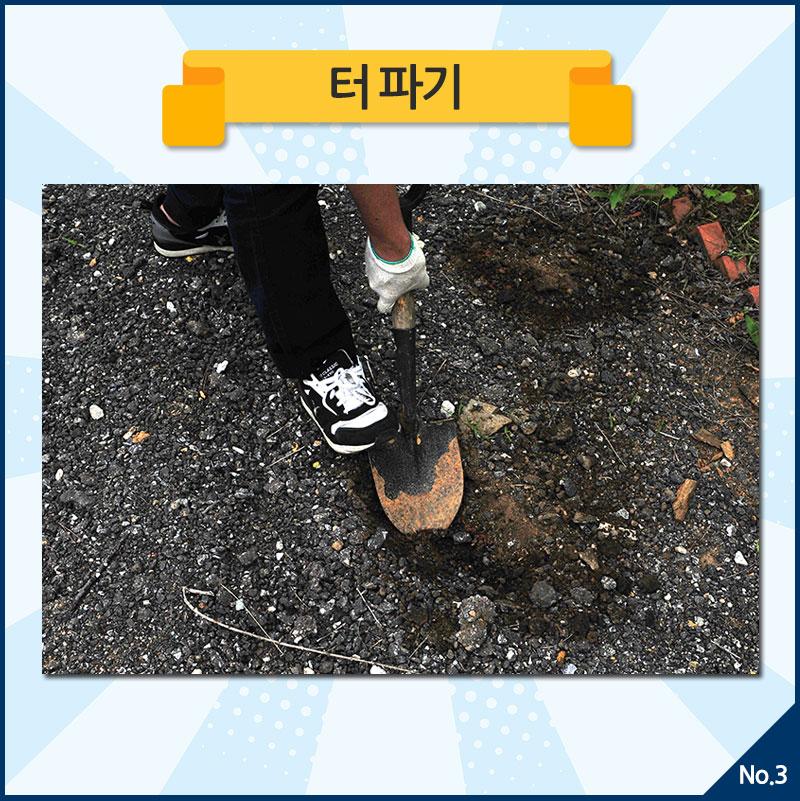 Soil_03.jpg